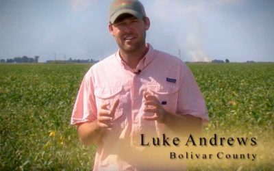 Meet Luke Andrews
