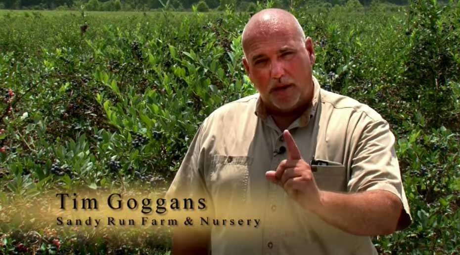 Meet Tim Goggans